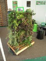 mur végétal hall bureau