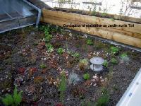 toiture végétale semi extensive paysagère