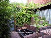 Mur végétal hydroponique et bassin