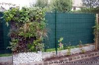 mur végétal et cloture végétalisée